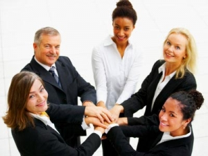 Developing cohesive business teams for success